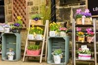 established local florist baildon - 2