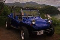 buggy tour excursion business - 3