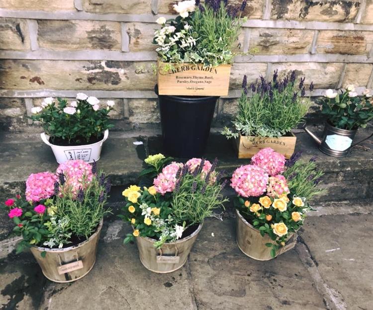 established local florist baildon - 5