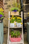 established local florist baildon - 3