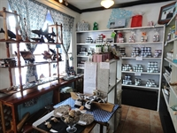specialty boutique ambergris caye - 3