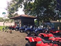 buggy tour excursion business - 1